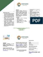 Informacion Diplomado Validaciones 2018-2