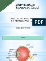 Glaucoma Primário de Ângulo Fechado