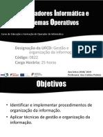 Gestão e Organização Da Informação