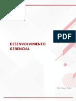 DESENVOLVIMENTO GERENCIAL.pdf