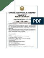 Universidad Nacional de Ingeniería - Seguridad Industrial y Salud Ocupacional.pdf