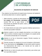 Guía para la carga de documentos