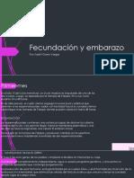 Fertilization and pregnancy.pptx
