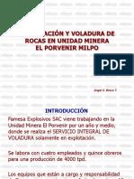 Perf. y Vol. MILPO