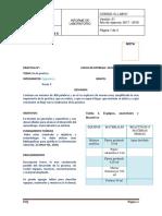 Formato-para-informe-ORGANICA-2 (1)