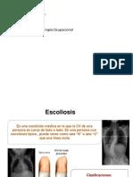 rx risser -anatomia topografica.pptx