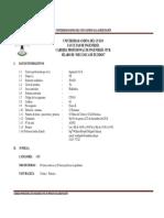 Silabus Mecanica de Fluidos 18-II