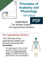 08chapter8theskeletalsystem Appendicularskeleton 170828041008 (1)