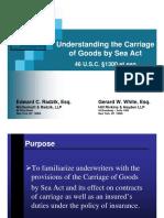 COGSAPresentation.pdf