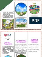 TRIPTICO PRIMAVERA JOEL.docx