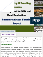 Goat Rearing & Breeding Business