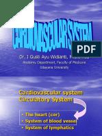 Cardio Vascular System 01