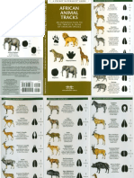 African Mammals (Tracks)