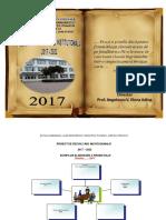 PDI 2017-2022 I.G Ultima Varianta.