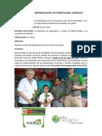 369453492-Proyectos-de-Reforestacion-Huanuco.docx