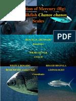 PART 1 - Adsorption of Mercury (Hg) using Milkfish Chanos chanos Scales