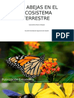 Las Abejas en El Ecosistema Terrestre