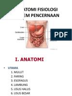 Anatomi Fisiologi Cerna