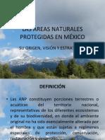 Plan de Manejo de Areas Naturales Protegidas.ppt