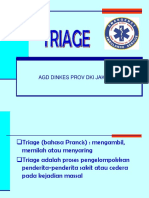 12.TRIAGE.pdf