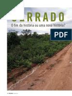 CH334_P24-29_Artigo Cerrado.pdf