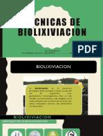 Tecnicas de Biolixiviacion