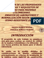ENSAYOS EN LA MADERA (2).ppt