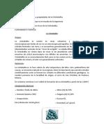 cristobalita.docx