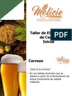 Taller Inicial Cerveza Artesanal