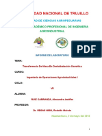 PRACTICA_DESHIDRATACION_OSMOTICA.doc