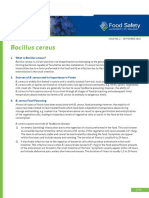 Bacillus Cereus Factsheet 2016 FINAL ACCESSIBLE