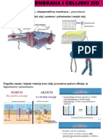 ćeliska membrana