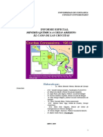 MINERIA CRUCITAS-Informe Final-Consejo Universitario UCR-MAYO 2009.doc