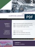 PPT_LAVAR_E_PASSAR.pdf