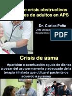 06.CrisisObst2018.pdf