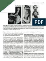 PARTE 2 Embriologia Básica (Moore-Persaud) PG 151-300