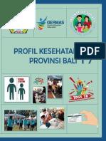 Bali_Profil_2017_ds.pdf