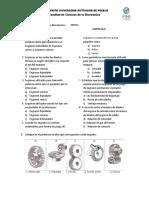 Cuestionario_Levas_Engranes.doc