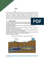 INFORME CAMPO PATUJUSAL.docx