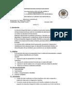 3 PLAN DE INTERVENCIÓN FAMILIAR 2018.docx