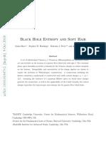Hawkings - Final Paper