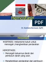 pk-hemostasis-dr-bastiana-sppk.pptx