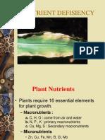 Nutrient Defisiency