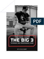 The Big Three Technique and Programming Guide