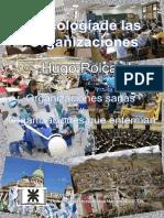 psicologia_de_las_organizaciones.pdf