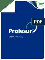 Memoria anual Prolesur 2017