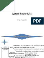 System Reproduksi Manusia by Puji