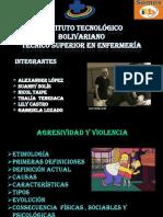 1 Expo Violencia