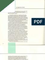 Roberto Segre y la Arquitectura Cubana - Conferencia.pdf