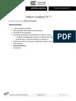 Producto Académico N°3